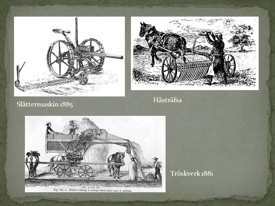 Slåttermaskin 1885 Hästräfsa Tröskverk 1881