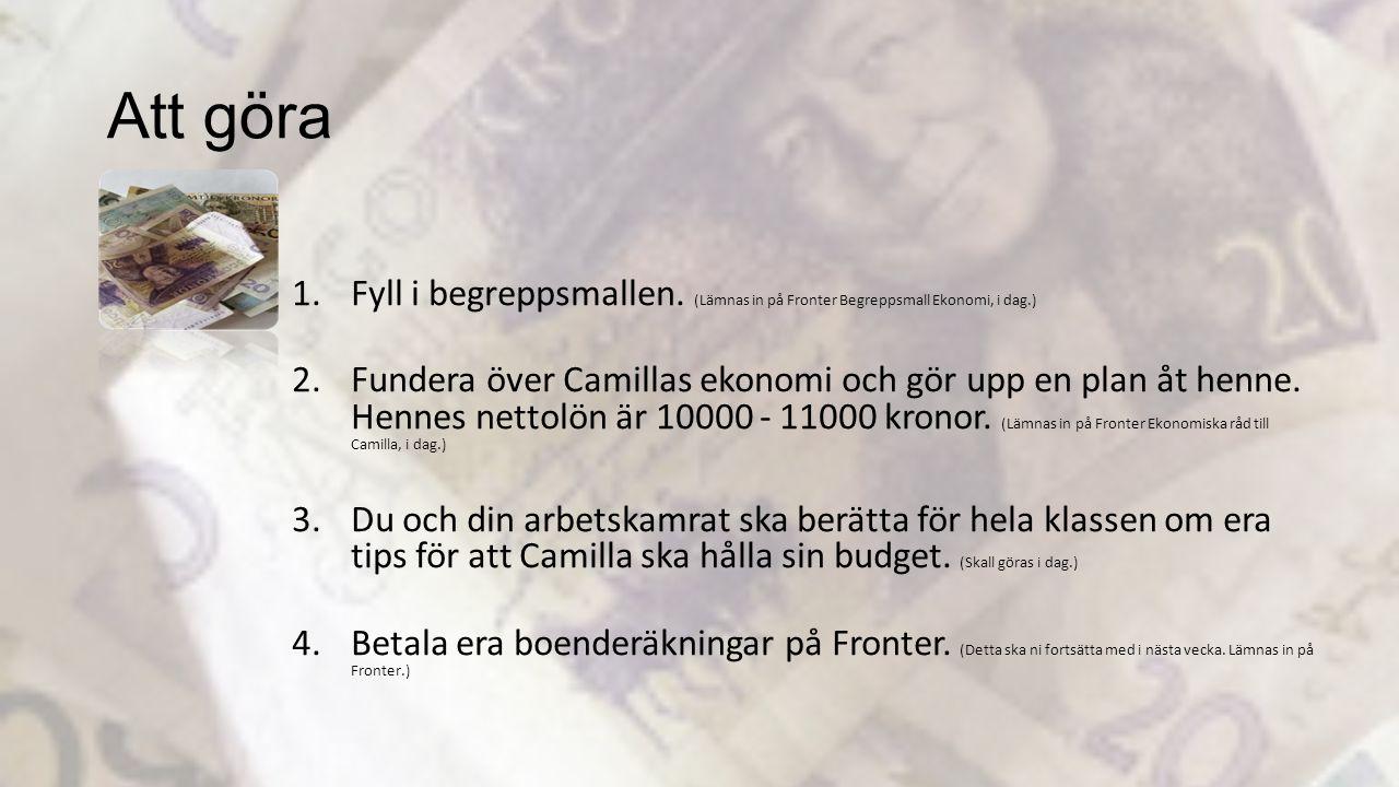 Att göra 1.Fyll i begreppsmallen. (Lämnas in på Fronter Begreppsmall Ekonomi, i dag.) 2.Fundera över Camillas ekonomi och gör upp en plan åt henne. He