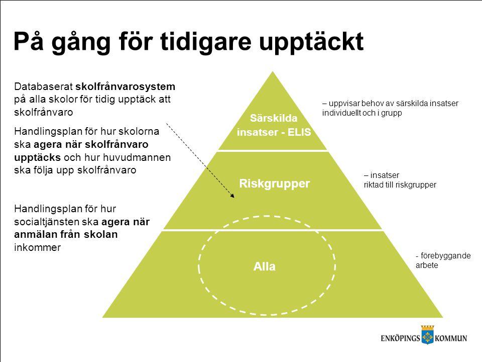 Alla Riskgrupper Särskilda insatser - ELIS På gång för tidigare upptäckt (http://www.skl.se) – uppvisar behov av särskilda insatser individuellt och i