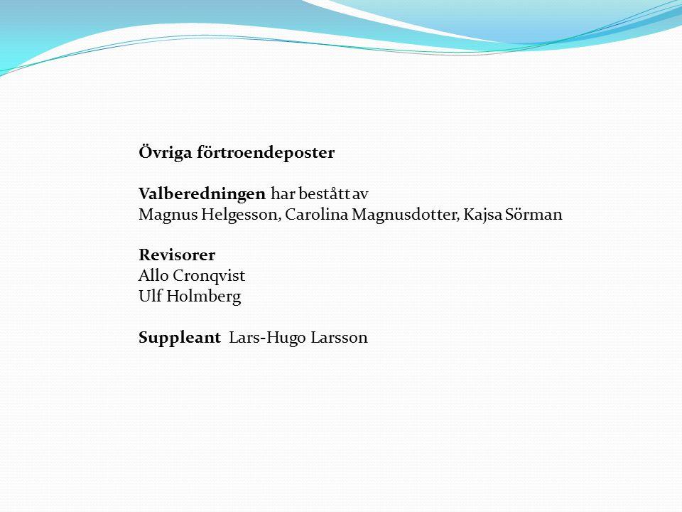 Övriga förtroendeposter Valberedningen har bestått av Magnus Helgesson, Carolina Magnusdotter, Kajsa Sörman Revisorer Allo Cronqvist Ulf Holmberg Suppleant Lars-Hugo Larsson