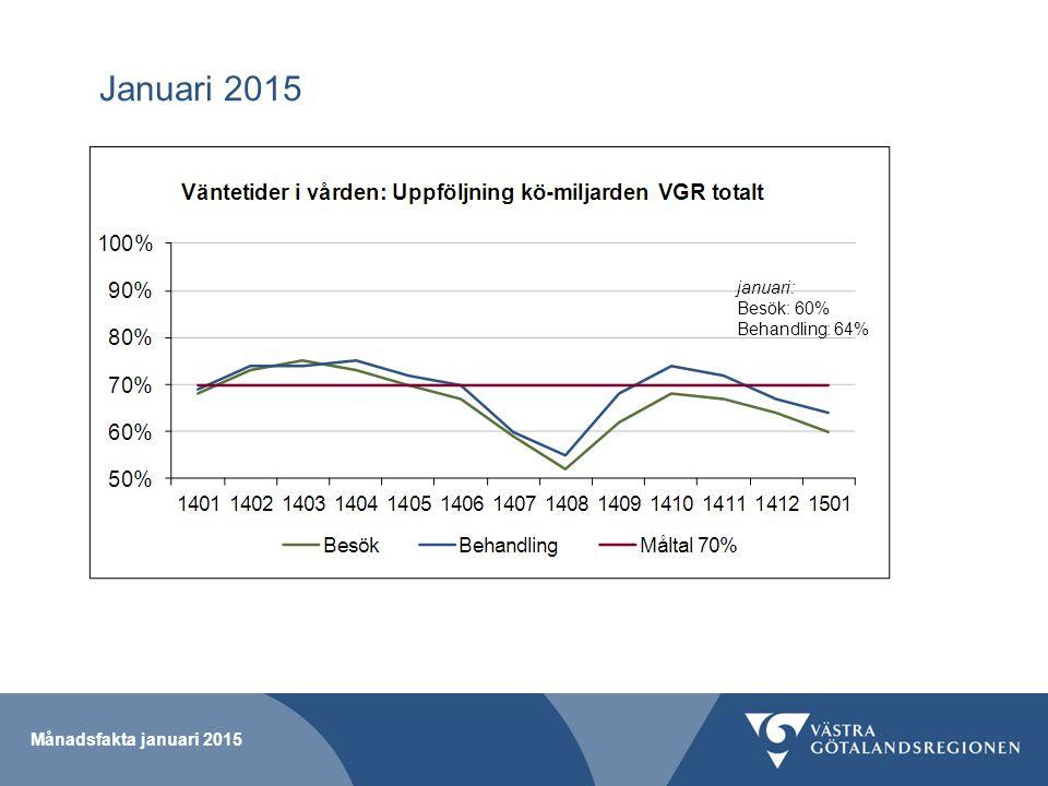 Januari 2015 Månadsfakta januari 2015 januari: Besök: 60% Behandling: 64%