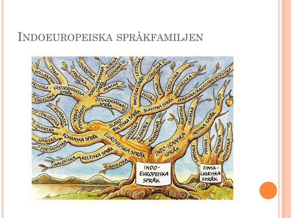 I NDOEUROPEISKA SPRÅKFAMILJEN