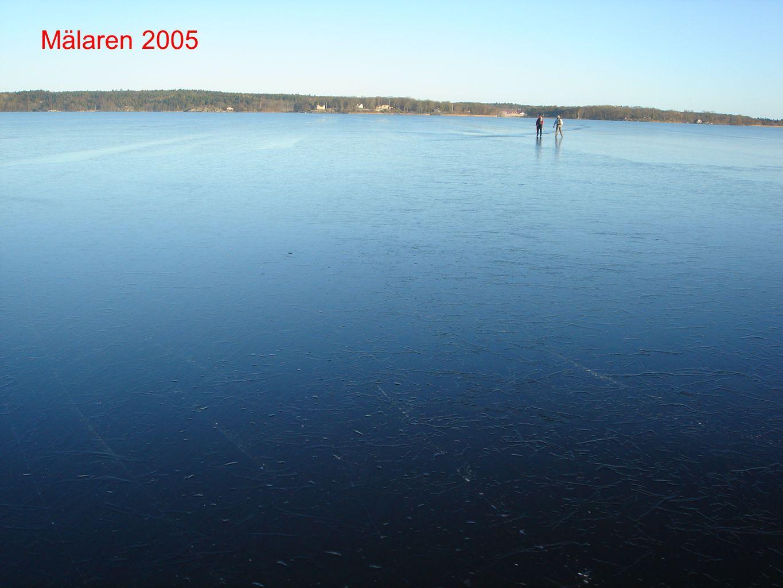 Mälaren 2005