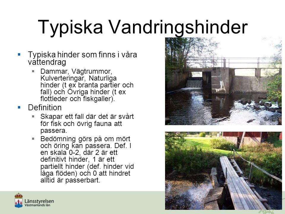 Typiska Vandringshinder  Typiska hinder som finns i våra vattendrag  Dammar, Vägtrummor, Kulverteringar, Naturliga hinder (t ex branta partier och f
