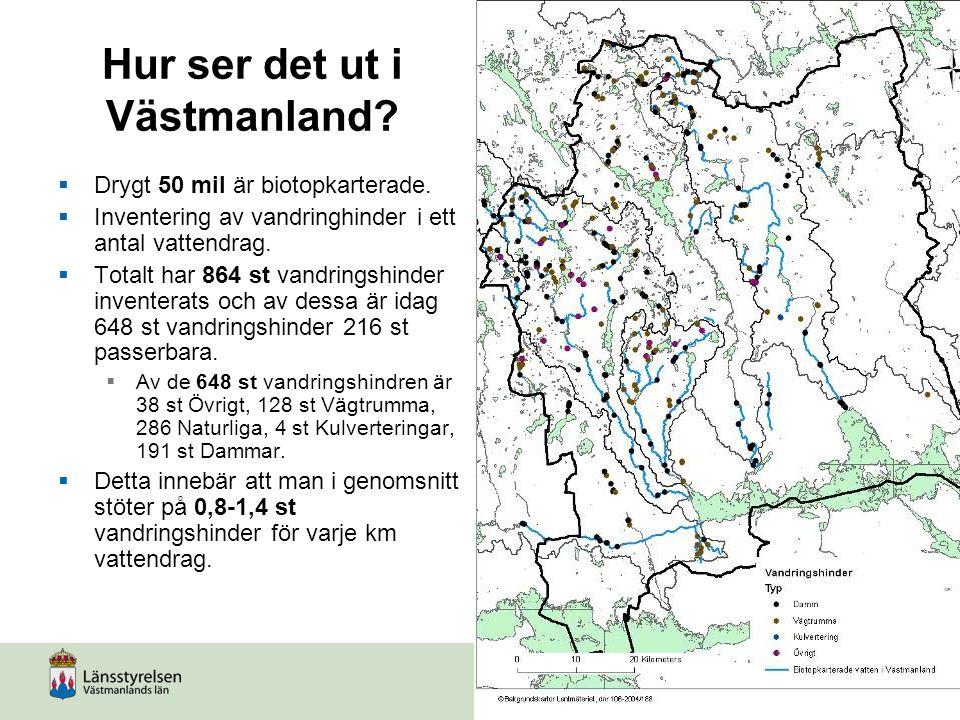Hur ser det ut i Västmanland?  Drygt 50 mil är biotopkarterade.  Inventering av vandringhinder i ett antal vattendrag.  Totalt har 864 st vandrings
