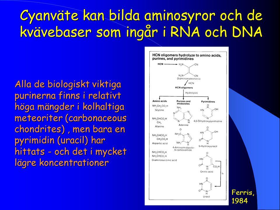 Cyanväte kan bilda aminosyror och de kvävebaser som ingår i RNA och DNA Ferris, 1984 Alla de biologiskt viktiga purinerna finns i relativt höga mängder i kolhaltiga meteoriter (carbonaceous chondrites), men bara en pyrimidin (uracil) har hittats - och det i mycket lägre koncentrationer