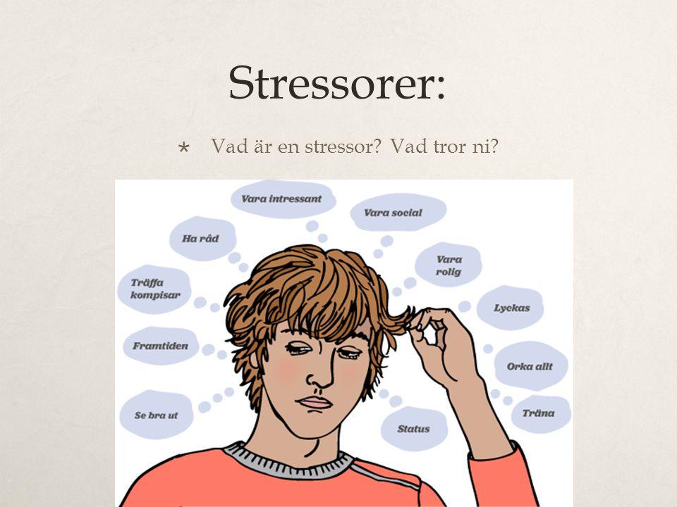 Stressorer:  Vad är en stressor? Vad tror ni?
