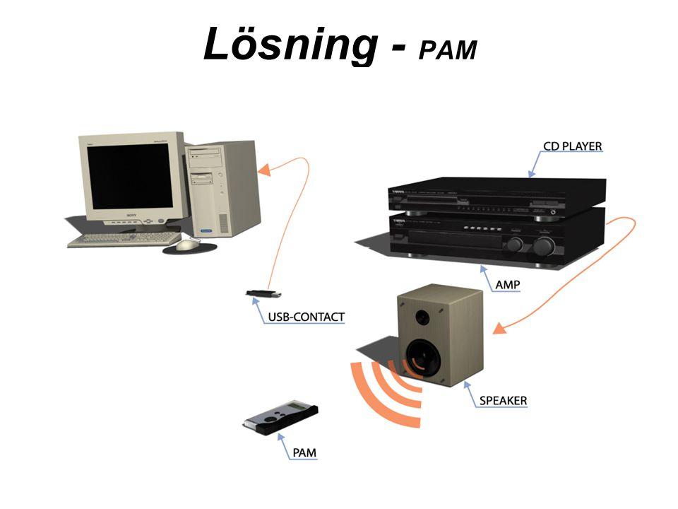 Lösning - PAM
