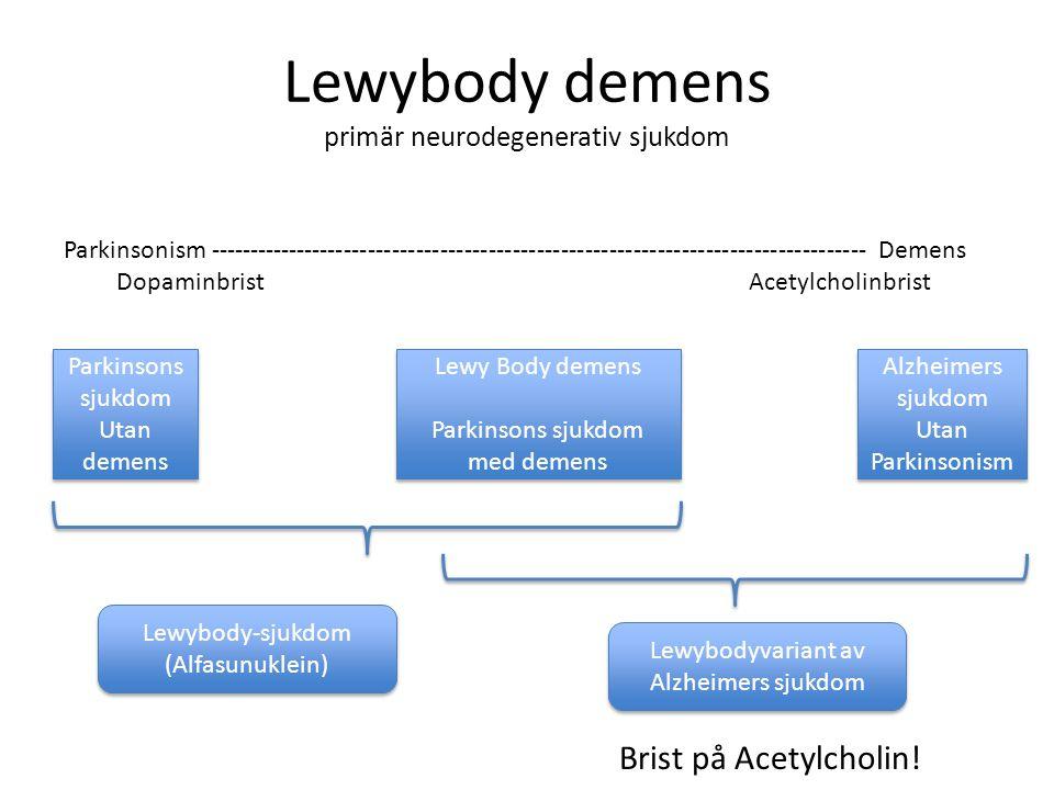 Lewybody demens primär neurodegenerativ sjukdom Parkinsonism ---------------------------------------------------------------------------------- Demens
