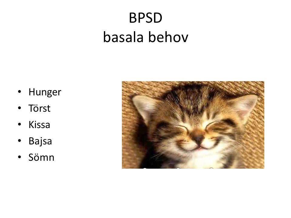 BPSD basala behov Hunger Törst Kissa Bajsa Sömn