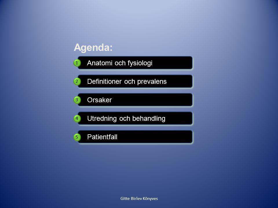 Definitioner och prevalens Orsaker Anatomi och fysiologi Patientfall Utredning och behandling Agenda: 1 2 3 4 5 Gitte Birlev Könyves