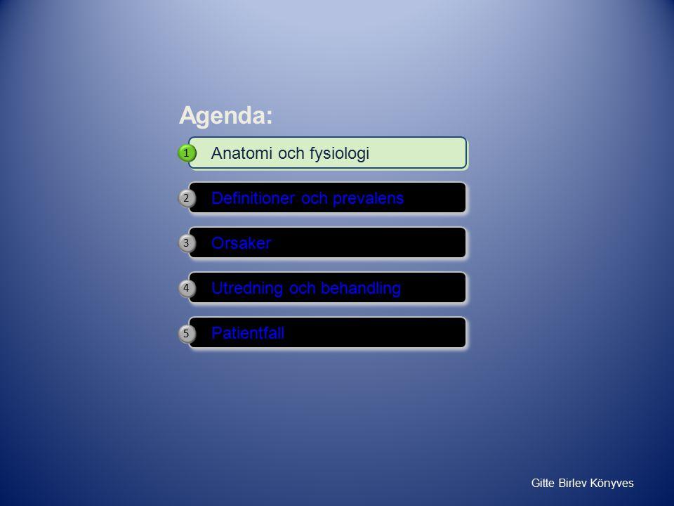 Definitioner och prevalens Orsaker Anatomi och fysiologi Patientfall Utredning och behandling Agenda: 1 2 4 5 3
