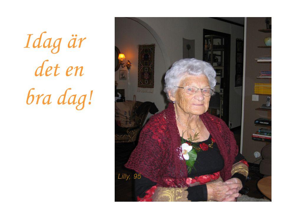 Idag är det en bra dag! Lilly, 95