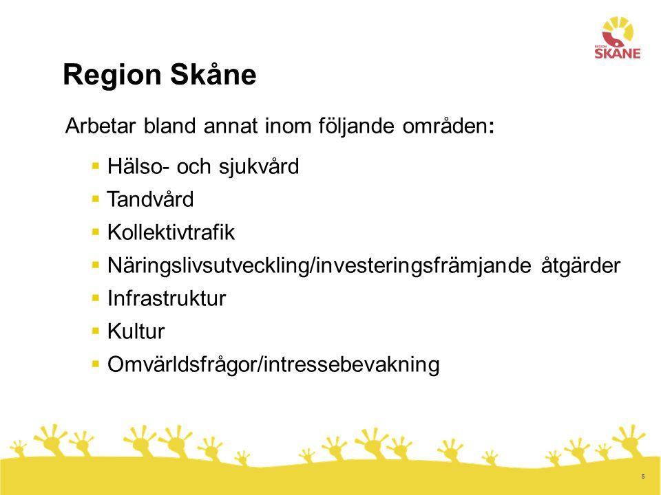 5 Arbetar bland annat inom följande områden:  Hälso- och sjukvård  Tandvård  Kollektivtrafik  Näringslivsutveckling/investeringsfrämjande åtgärder  Infrastruktur  Kultur  Omvärldsfrågor/intressebevakning Region Skåne