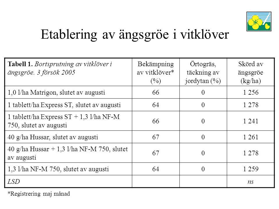 Etablering av ängsgröe i vitklöver Tabell 2.Bortsprutning av vitklöver i ängsgröe.