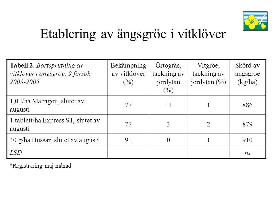 Etablering av ängsgröe i vitklöver Tabell 2. Bortsprutning av vitklöver i ängsgröe.