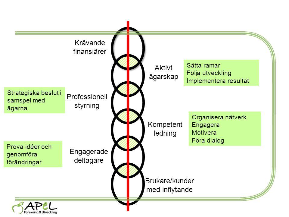 Aktivt ägarskap Professionell styrning Kompetent ledning Engagerade deltagare Sätta ramar Följa utveckling Implementera resultat Strategiska beslut i