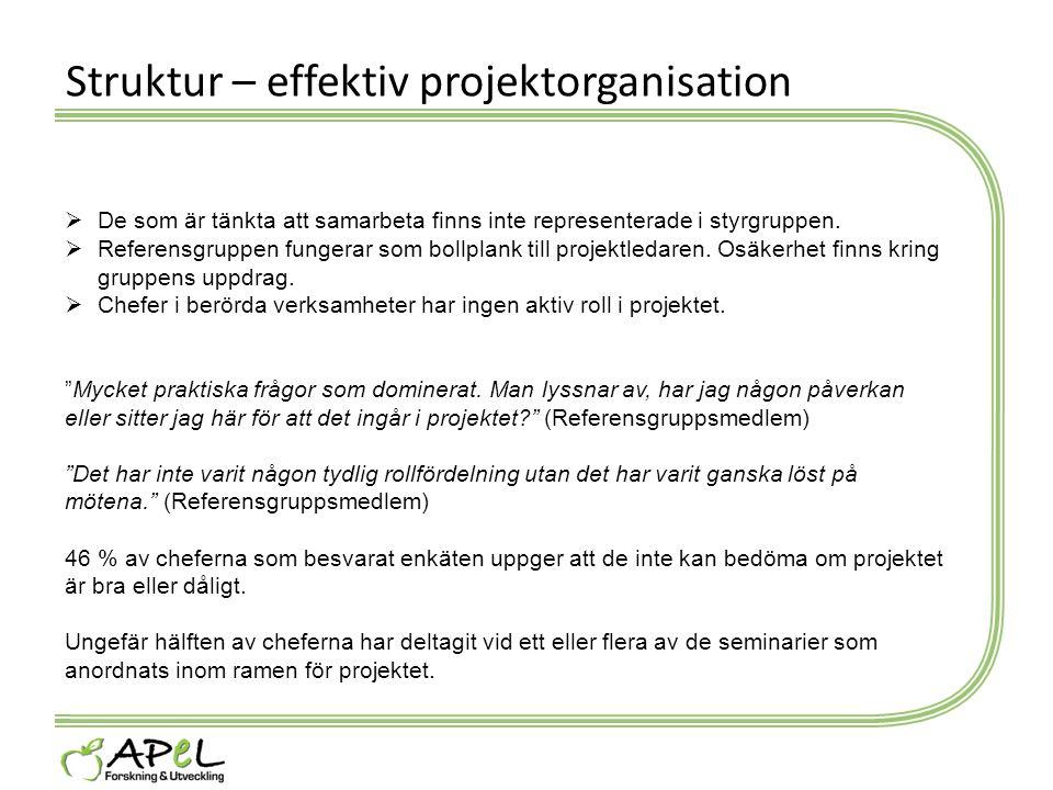 Struktur – effektiv projektorganisation  De som är tänkta att samarbeta finns inte representerade i styrgruppen.  Referensgruppen fungerar som bollp