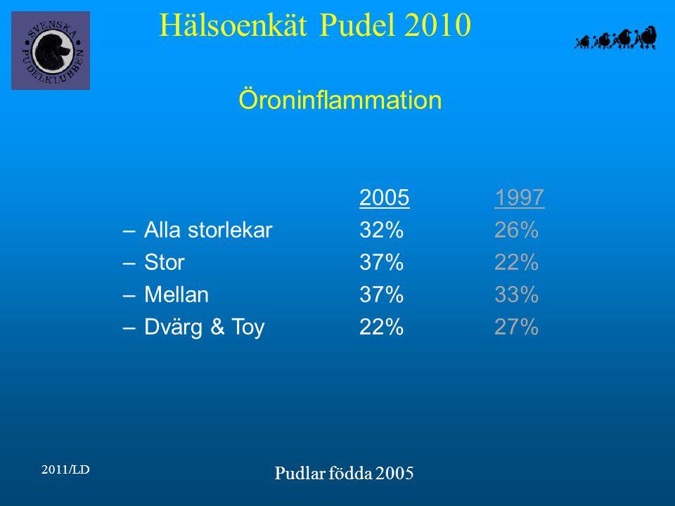 Hälsoenkät Pudel 2010 2011/LD Pudlar födda 2005 Öroninflammation 20051997 –Alla storlekar32%26% –Stor37%22% –Mellan37%33% –Dvärg & Toy22%27%