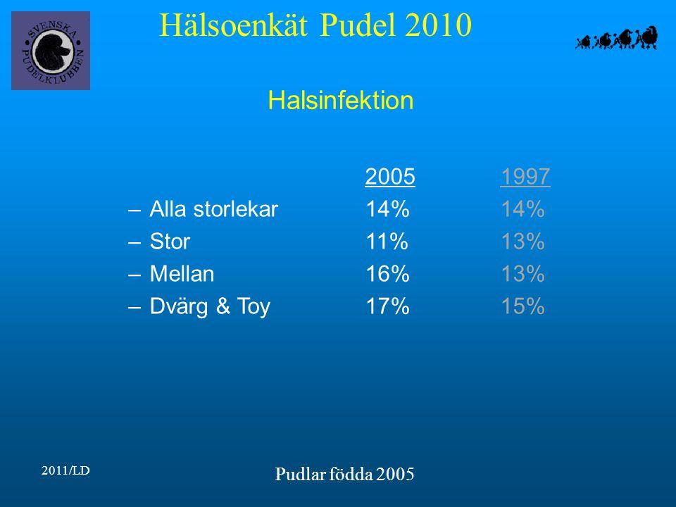 Hälsoenkät Pudel 2010 2011/LD Pudlar födda 2005 Halsinfektion 20051997 –Alla storlekar14%14% –Stor11%13% –Mellan16%13% –Dvärg & Toy17%15%
