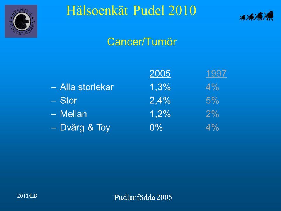 Hälsoenkät Pudel 2010 2011/LD Pudlar födda 2005 Cancer/Tumör 20051997 –Alla storlekar1,3%4% –Stor2,4%5% –Mellan1,2%2% –Dvärg & Toy0%4%