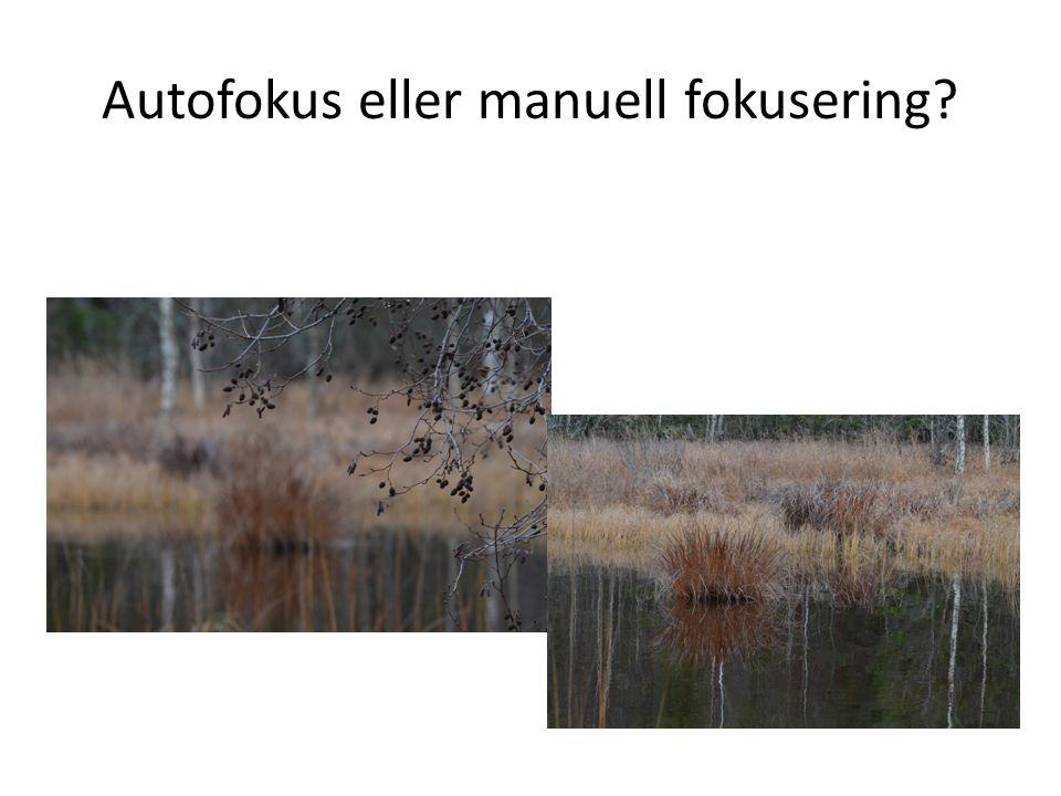 Autofokus eller manuell fokusering