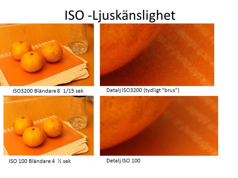 ISO -Ljuskänslighet ISO3200 Bländare 8 1/15 sek Detalj ISO3200 (tydligt brus ) ISO 100 Bländare 4 ½ sek Detalj ISO 100