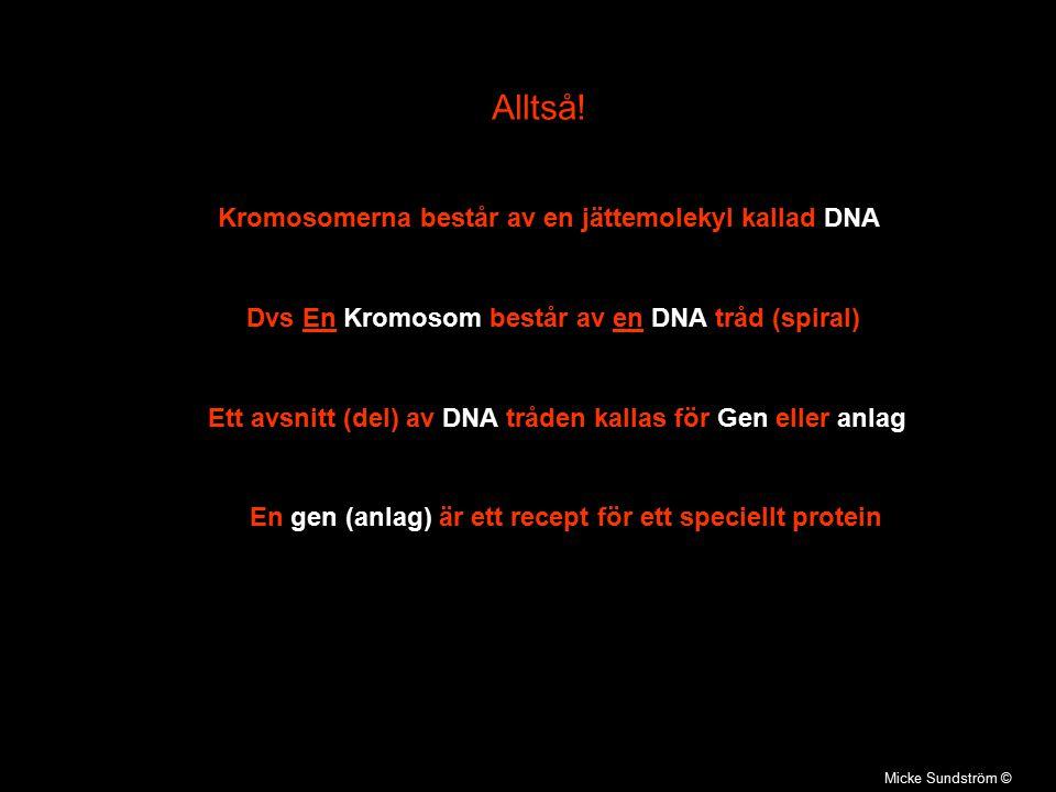 Micke Sundström © Alltså! Kromosomerna består av en jättemolekyl kallad DNA Dvs En Kromosom består av en DNA tråd (spiral) Ett avsnitt (del) av DNA tr