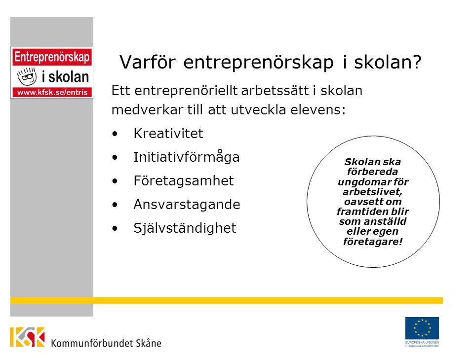 ENTRIS Projektägare: Kommunförbundet Skåne Finansiär: Svenska ESF-rådet Samverkanspartners: Region Skåne Malmö högskola Företagarna