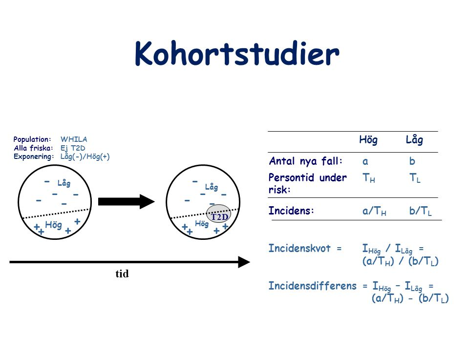 Kohortstudier Population:WHILA Alla friska: Ej T2D Exponering: Låg(-)/Hög(+) tid T2D - - - - - Låg Hög + + + + - - - - - Låg Hög + + + + Antal nya fal