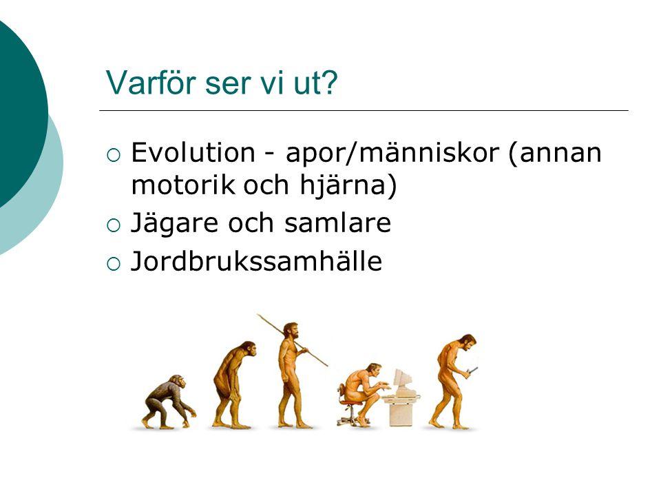 Varför ser vi ut?  Evolution - apor/människor (annan motorik och hjärna)  Jägare och samlare  Jordbrukssamhälle