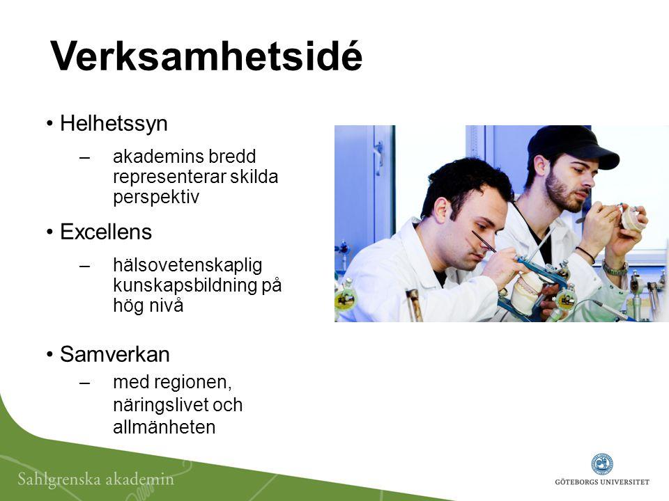 Verksamhetsidé Helhetssyn – akademins bredd representerar skilda perspektiv Excellens – hälsovetenskaplig kunskapsbildning på hög nivå Samverkan – med