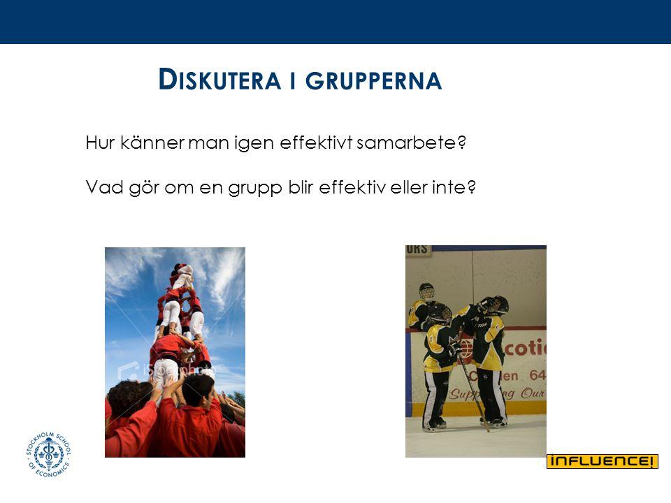 D ISKUTERA I GRUPPERNA Hur känner man igen effektivt samarbete? Vad gör om en grupp blir effektiv eller inte?