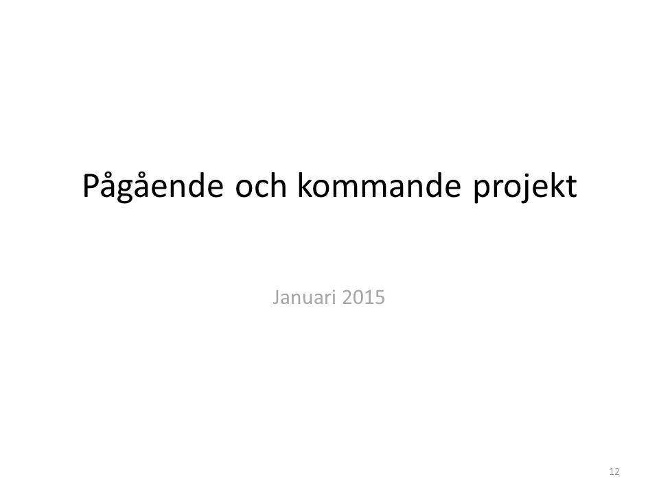 Pågående och kommande projekt Januari 2015 12