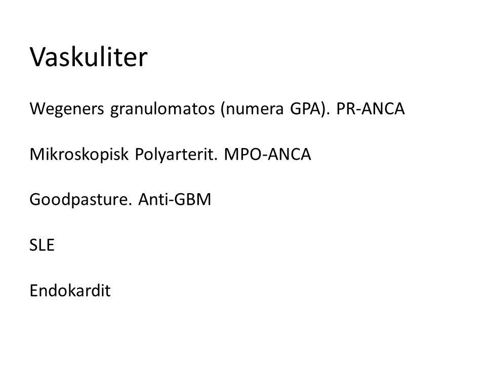 Vaskuliter Wegeners granulomatos (numera GPA).PR-ANCA Mikroskopisk Polyarterit.