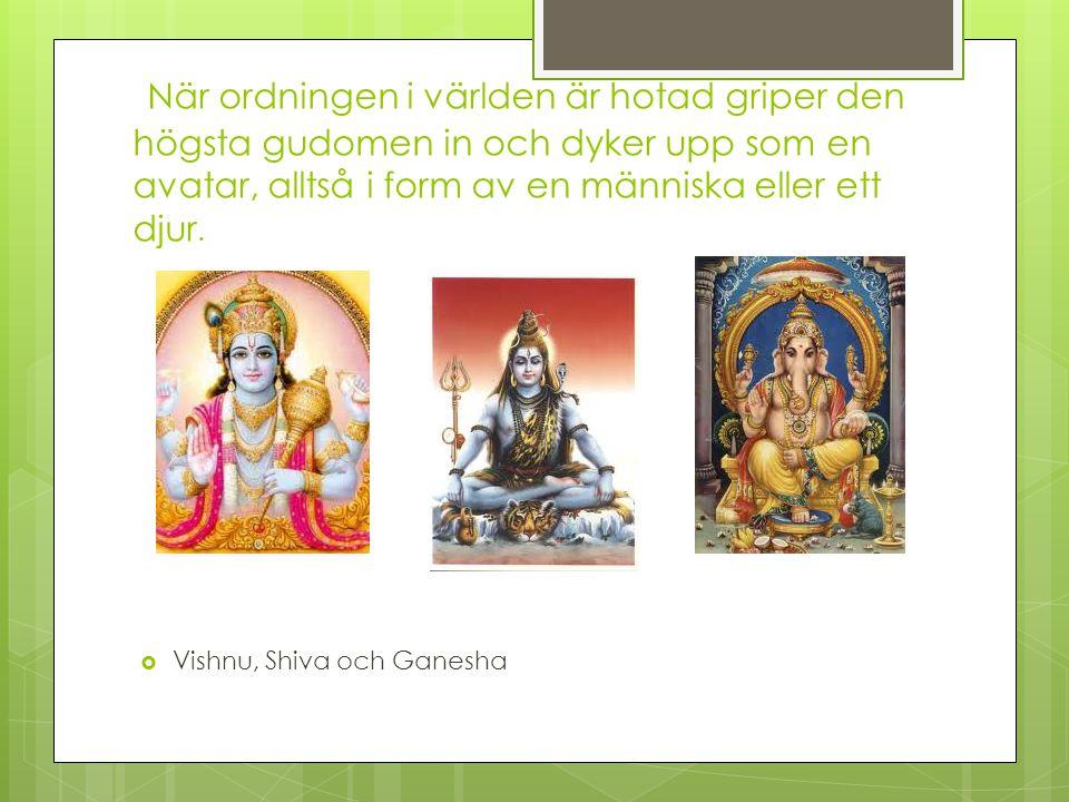 När ordningen i världen är hotad griper den högsta gudomen in och dyker upp som en avatar, alltså i form av en människa eller ett djur.  Vishnu, Shiv