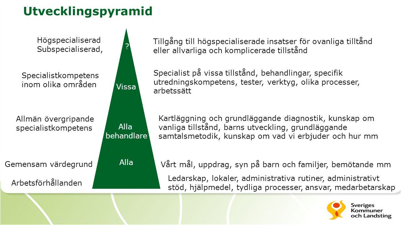 Utvecklingspyramid Arbetsförhållanden Gemensam värdegrund Allmän övergripande specialistkompetens Specialistkompetens inom olika områden Högspecialise