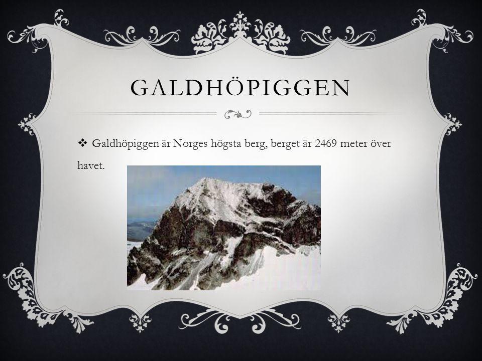 GALDHÖPIGGEN  Galdhöpiggen är Norges högsta berg, berget är 2469 meter över havet.
