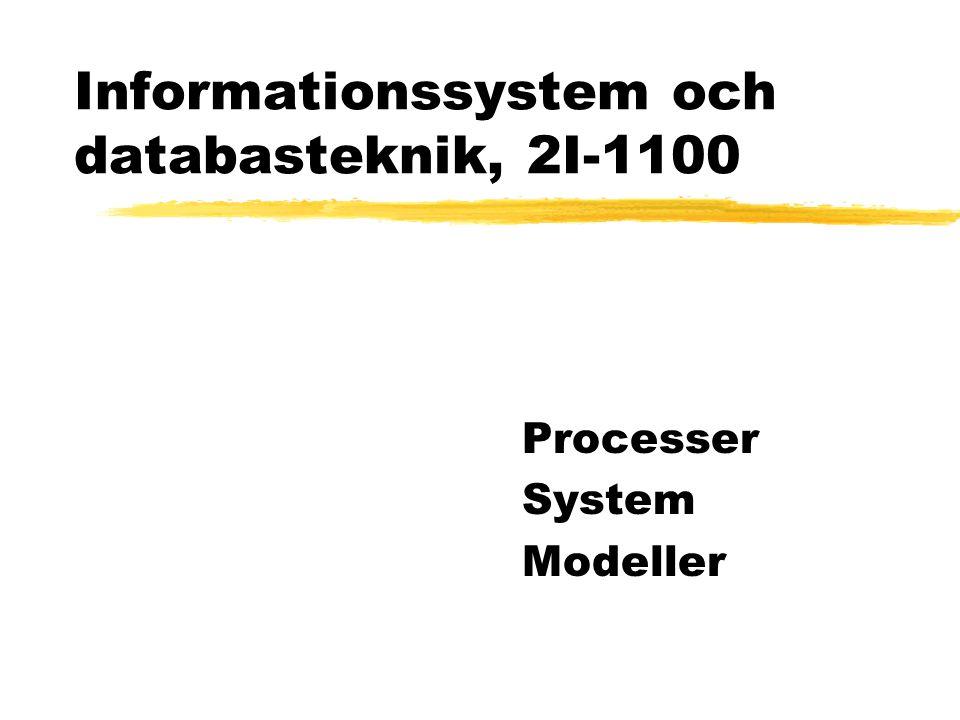Informationssystem och databasteknik, 2I-1100 Processer System Modeller