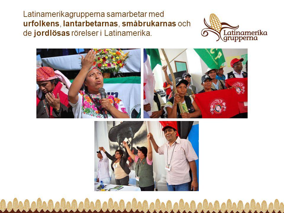 Latinamerikagrupperna samarbetar med urfolkens, lantarbetarnas, småbrukarnas och de jordlösas rörelser i Latinamerika.