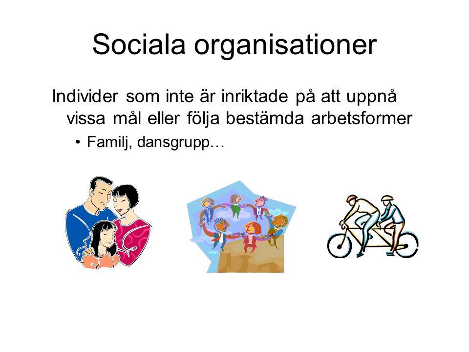 Sociala organisationer Individer som inte är inriktade på att uppnå vissa mål eller följa bestämda arbetsformer Familj, dansgrupp…