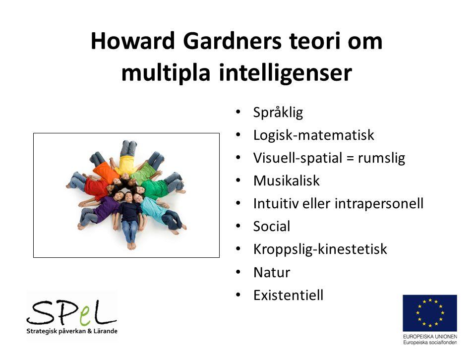 Howard Gardners teori om multipla intelligenser Språklig Logisk-matematisk Visuell-spatial = rumslig Musikalisk Intuitiv eller intrapersonell Social Kroppslig-kinestetisk Natur Existentiell