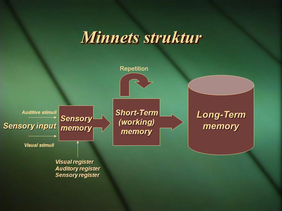 Minnets struktur Sensorymemory Short-Term(working)memory Sensory input Long-Termmemory Repetition Auditive stimuli Visual stimuli Visual register Visu