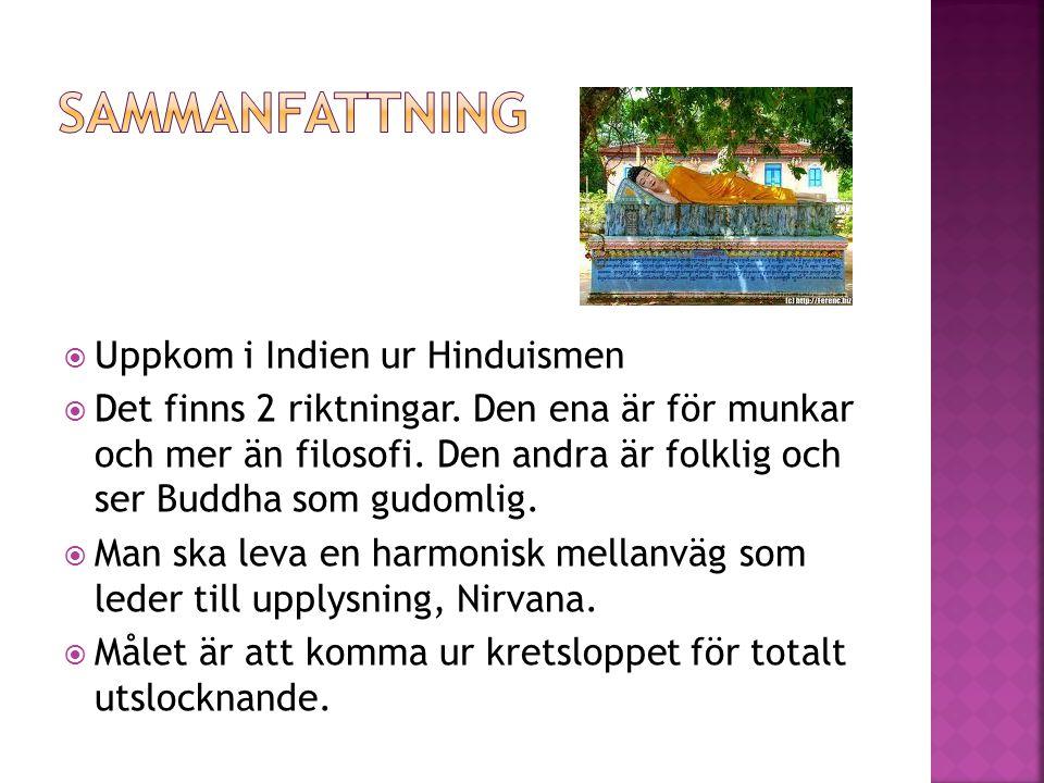 Uppkom i Indien ur Hinduismen  Det finns 2 riktningar. Den ena är för munkar och mer än filosofi. Den andra är folklig och ser Buddha som gudomlig.
