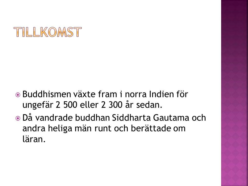  Buddhismen växte fram i norra Indien för ungefär 2 500 eller 2 300 år sedan.  Då vandrade buddhan Siddharta Gautama och andra heliga män runt och b