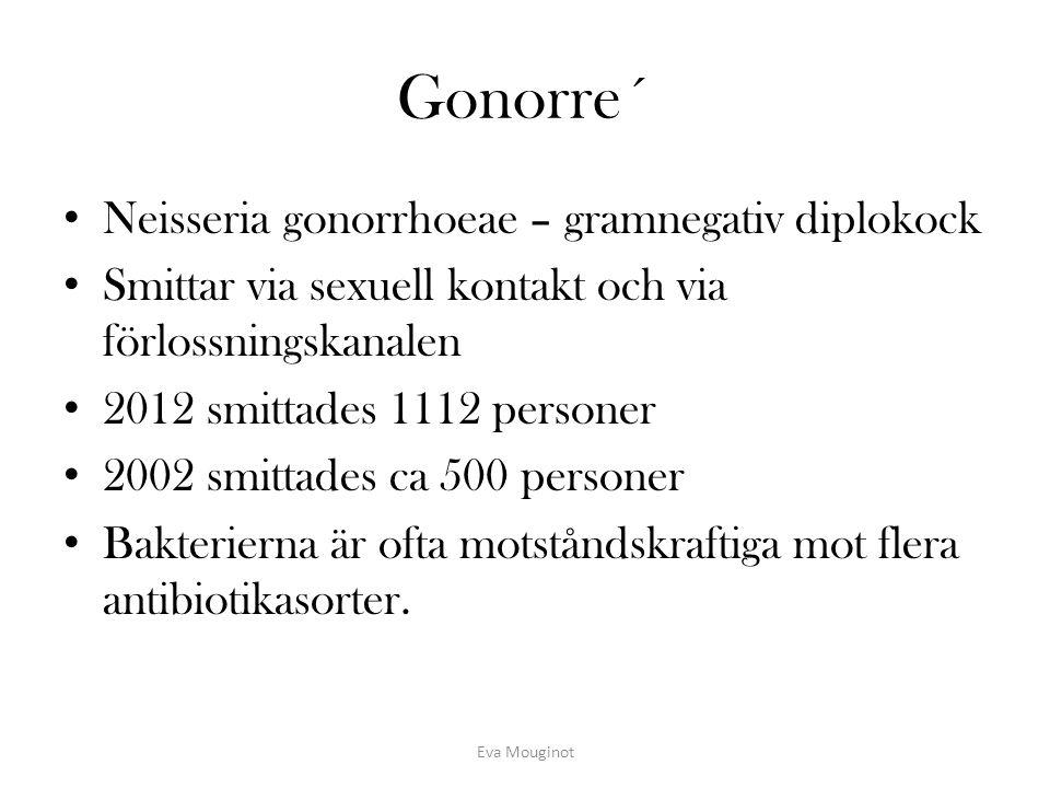 Gonorre´ Neisseria gonorrhoeae – gramnegativ diplokock Smittar via sexuell kontakt och via förlossningskanalen 2012 smittades 1112 personer 2002 smitt