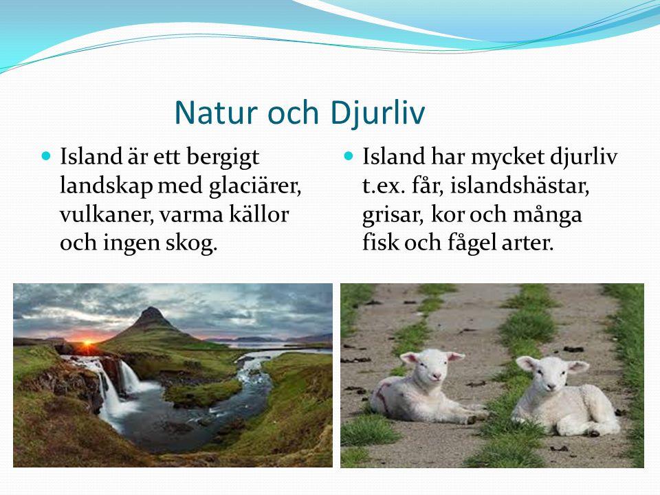 Natur och Djurliv Island är ett bergigt landskap med glaciärer, vulkaner, varma källor och ingen skog. Island har mycket djurliv t.ex. får, islandshäs