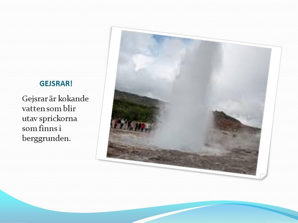 GEJSRAR! Gejsrar är kokande vatten som blir utav sprickorna som finns i berggrunden.