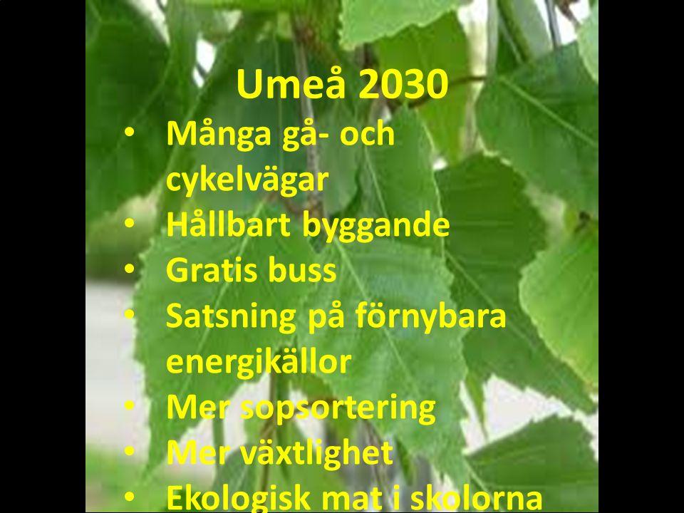 Umeå 2030 Många gå- och cykelvägar Hållbart byggande Gratis buss Satsning på förnybara energikällor Mer sopsortering Mer växtlighet Ekologisk mat i skolorna