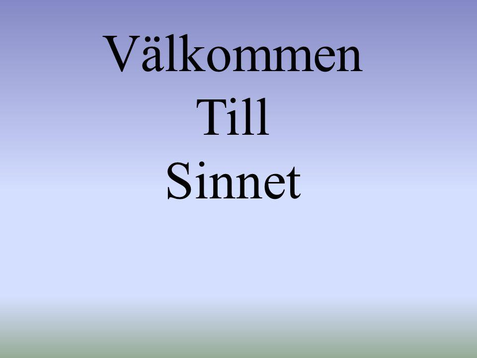 S Sl ä ktforskarna i Norrk ö ping (SiN) En lokalt förankrad förening för genealogisk forskning i Norrköping Bildad mars 2008 Vi är i dag 270 medlemmar!